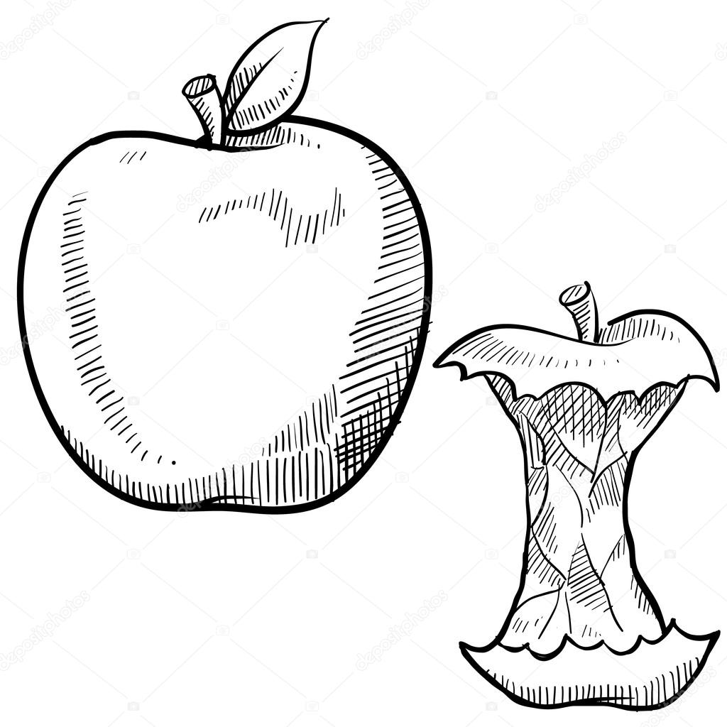 1024x1024 Apple And Apple Core Sketch Stock Vector Lhfgraphics