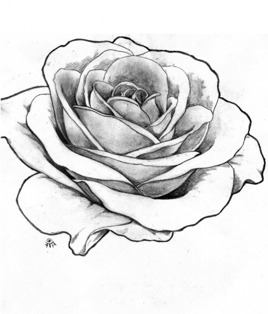 Rose Flower Black And White Drawing