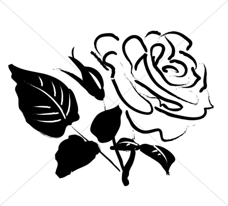 776x701 Rose Blossom Sketch Church Rose Clipart