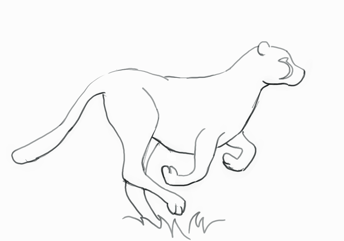 1300x912 How To Draw A Cheetah