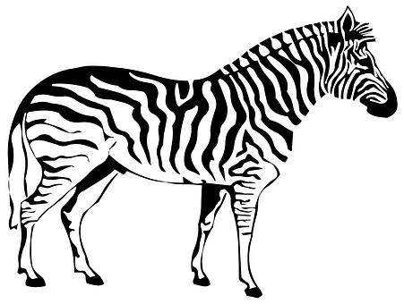 451x340 Sketch, Animals