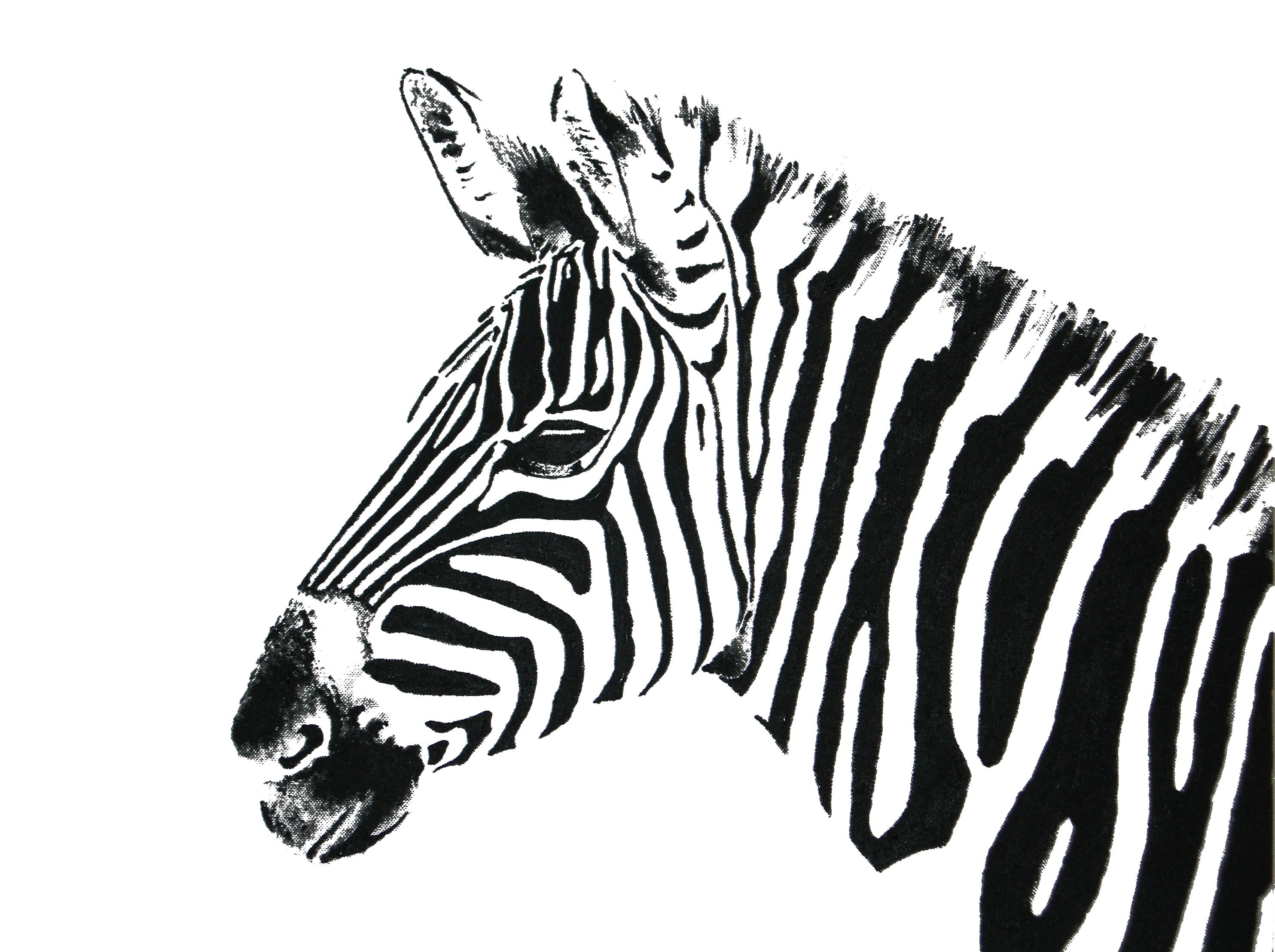 2968x2216 White Zebra.jpg