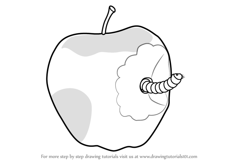 800x567 Learn How To Draw An Apple With Worm (Fruits For Kids) Step By