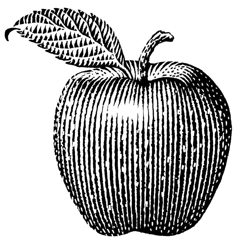 800x806 Red Delicious Apple