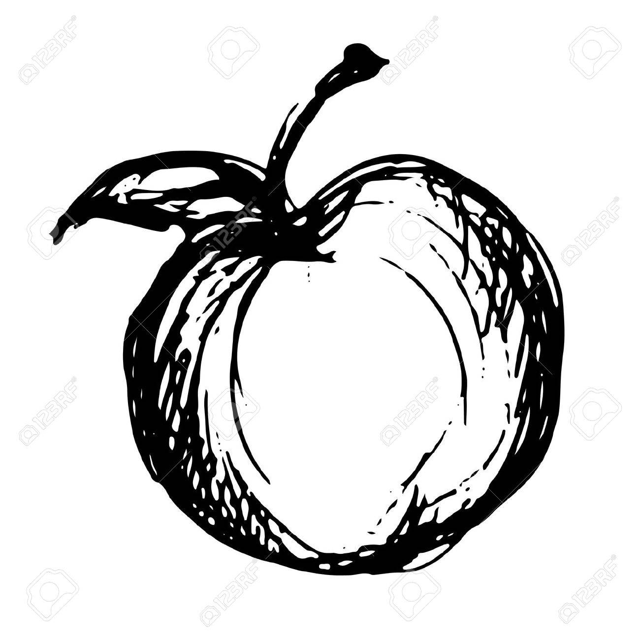 1300x1300 Apple Icon Sketch Royalty Free Cliparts, Vectors, And Stock