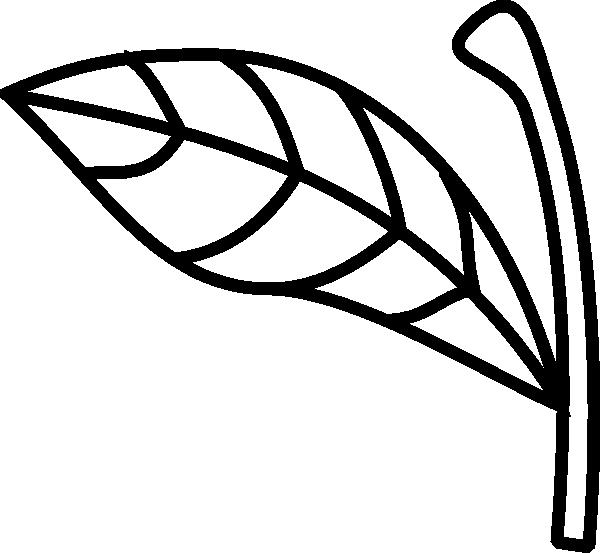 600x553 Apple Leaf Clipart Black White Amp Apple Leaf Clip Art Black