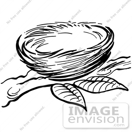 450x450 Clipart Of A Bird Nest On A Branch In Black And White