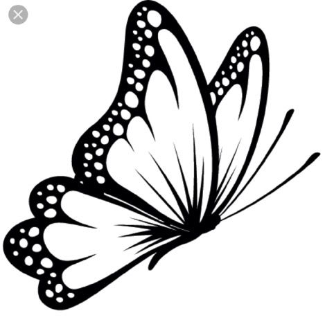 black and white butterfly drawing at getdrawings com free for rh getdrawings com butterfly clipart black and white free butterfly clipart images black and white