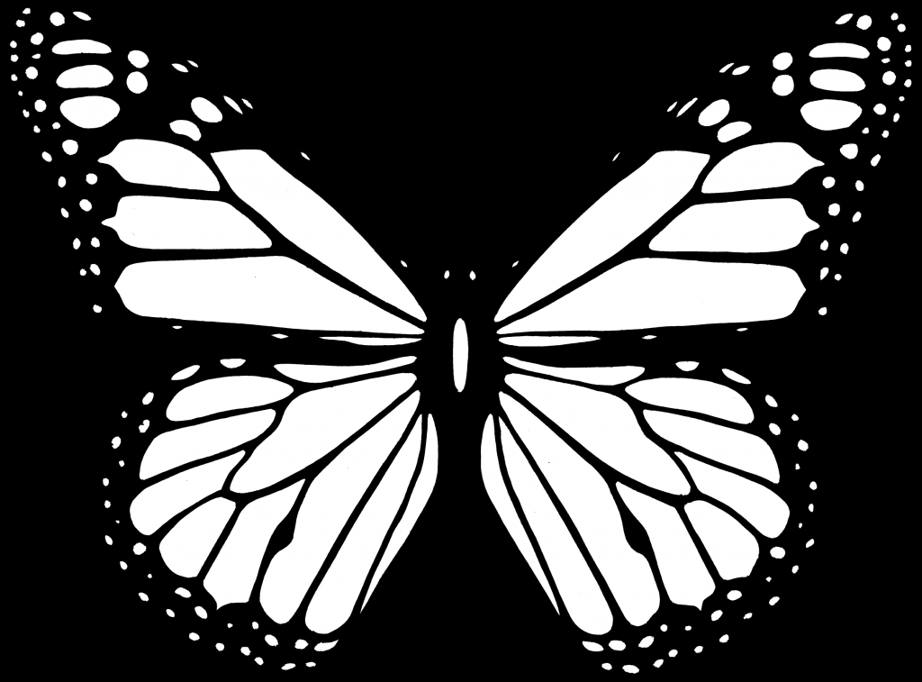 1024x757 Butterfly Drawing Black And White Clipart Black And White