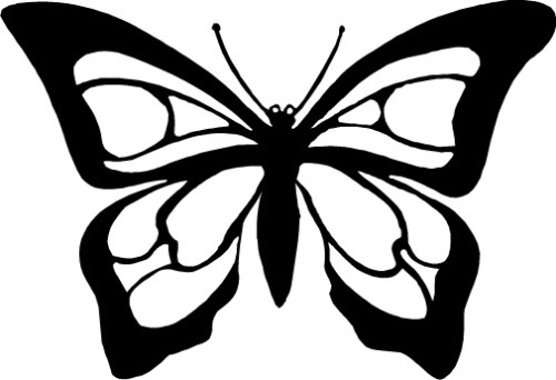 500x342 Butterfly Clipart Black And White