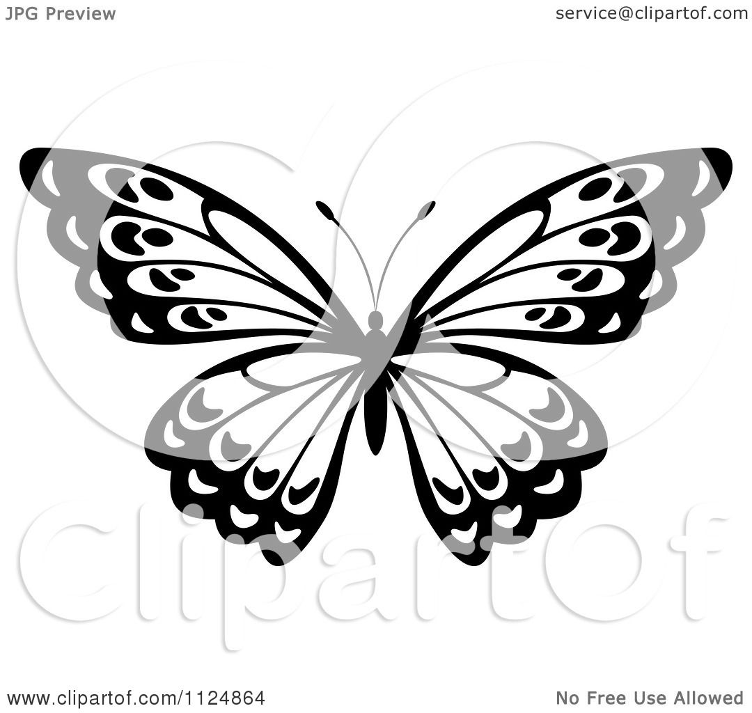 1080x1024 Clipart Of A Black And White Butterfly 22