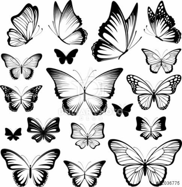 600x618 Latest Butterfly Tattoo Designs Samples