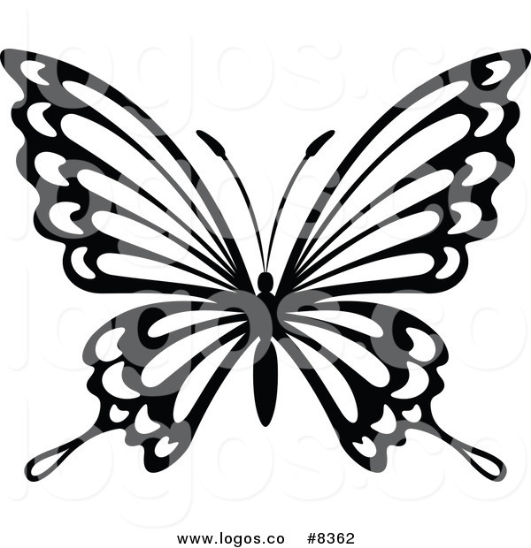 black and white butterfly drawing at getdrawings com free for rh getdrawings com black and white clip art butterfly free clipart pictures black and white butterfly