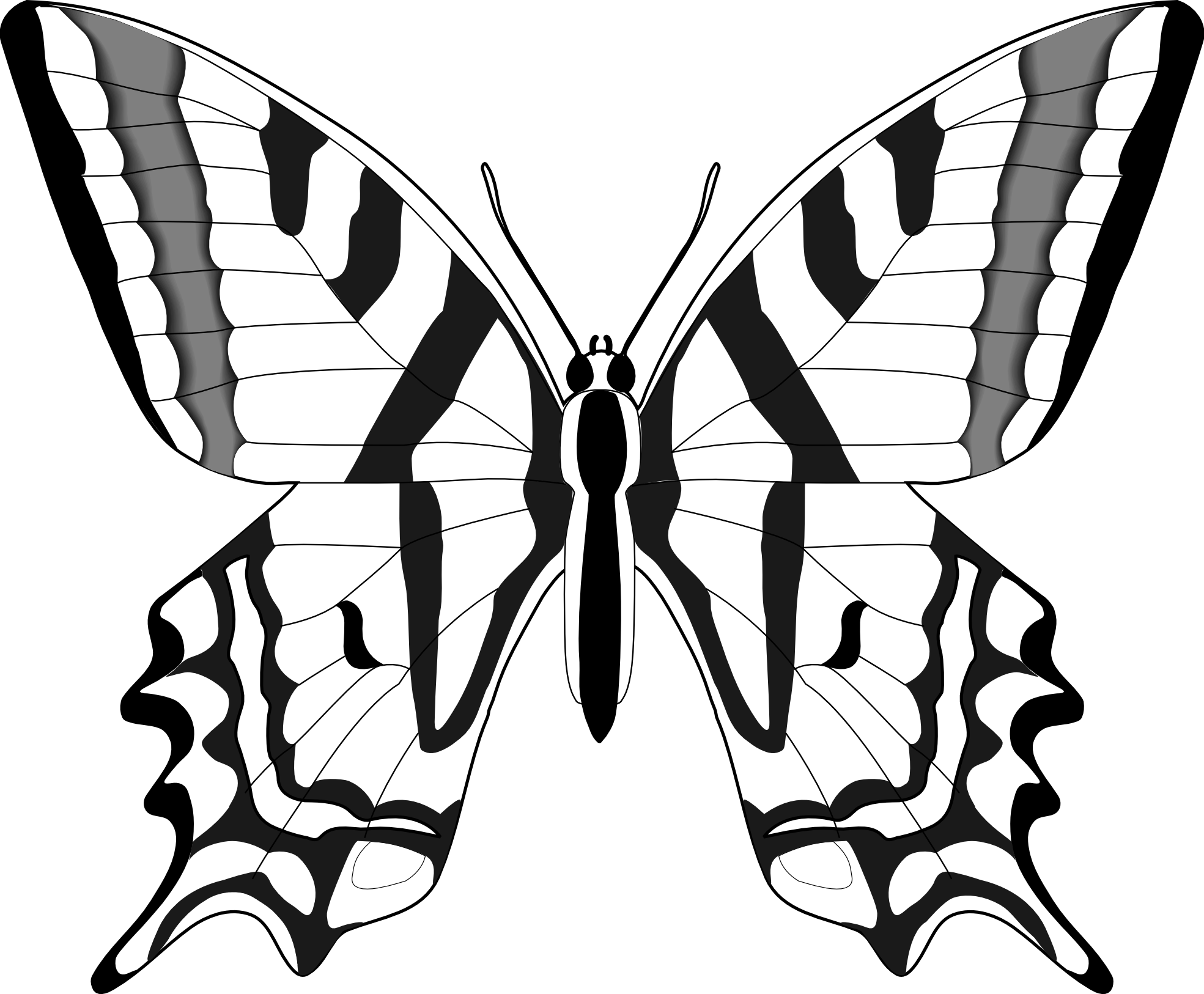 1969x1626 Simple Black And White Butterfly Clipart