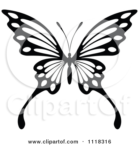 450x470 Butterfly Black And White Clipart