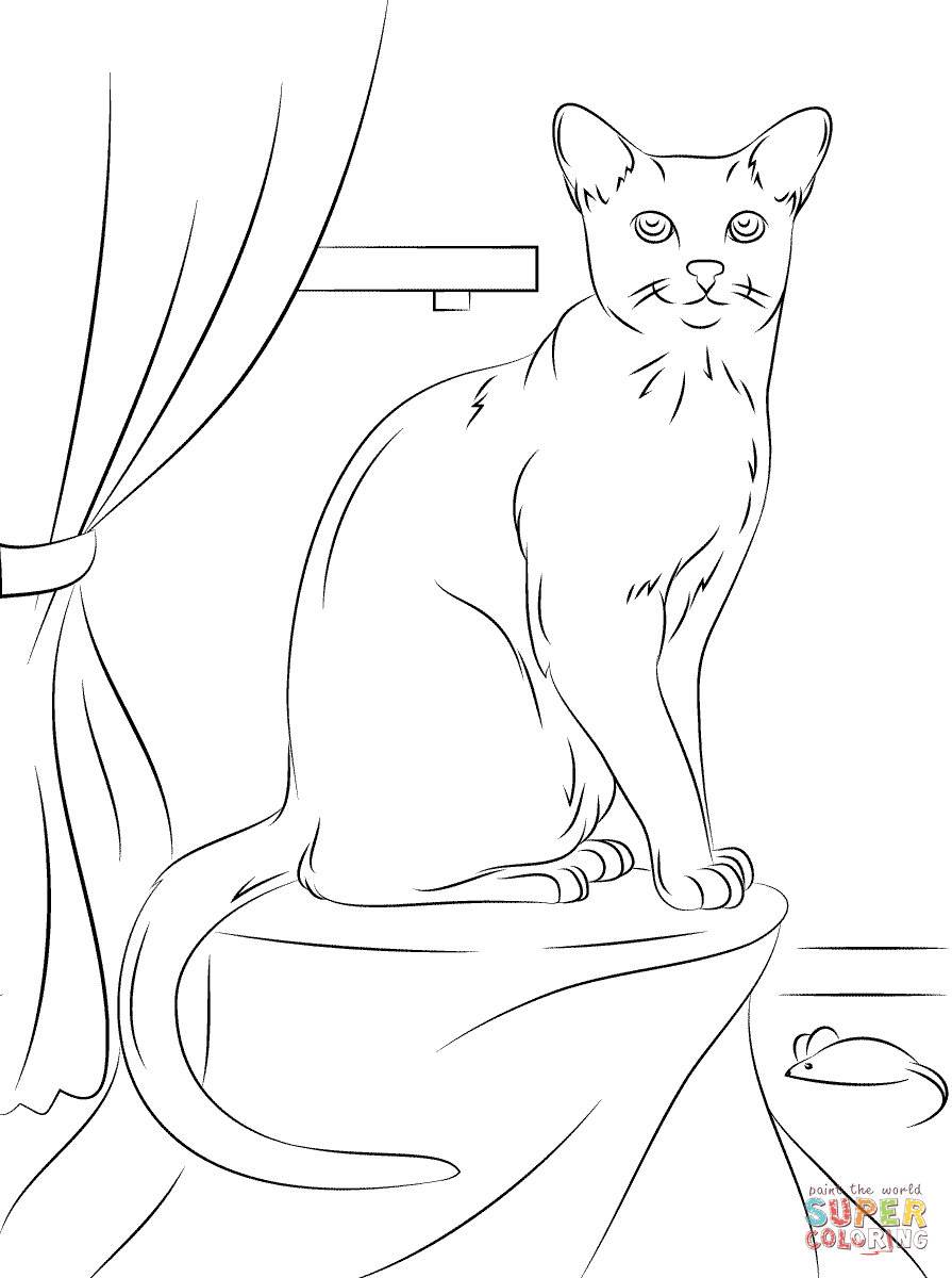 895x1200 Cats Coloring Pages Free Coloring Pages