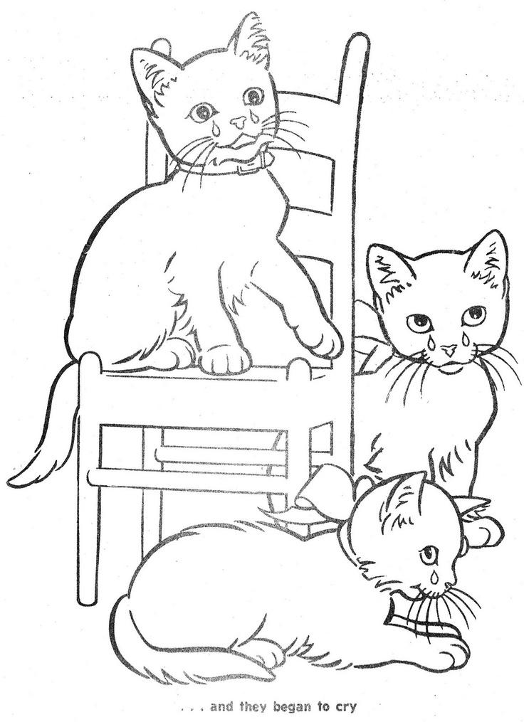 736x1015 Drawn Kittens Little Cat