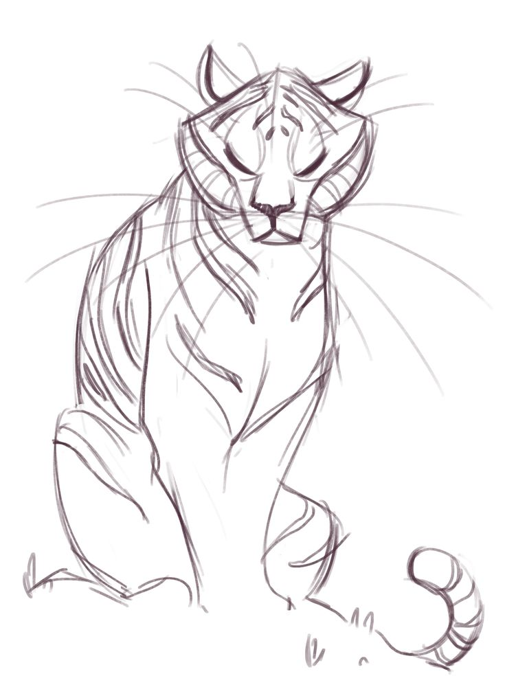 735x1016 The Best Cat Sketch Ideas On Cat Reference, How
