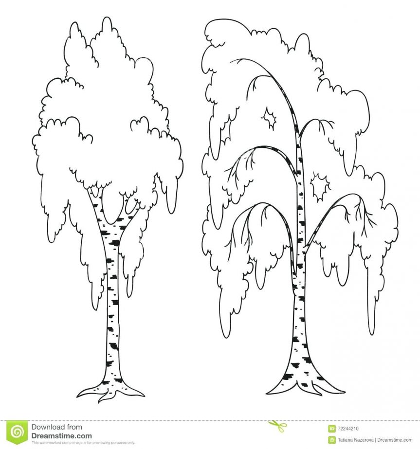 863x923 Royalty Free Illustration Christmas Tree Outline Drawings Trees