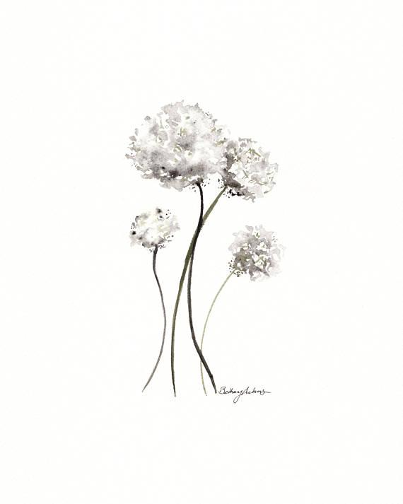 570x713 8x10 Original White Dandelion Watercolor Painting The Gray