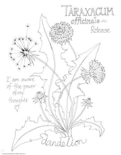 468x600 Dandelion Coloring Page