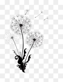 260x335 Dandelion Vectors, 337 Graphic Resources For Free Download