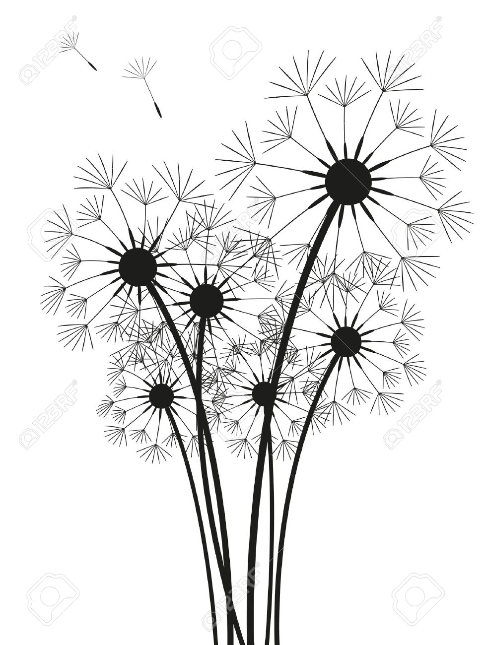 975x1300 Dandelions Silhouette Isolated On White Royalty Free Cliparts