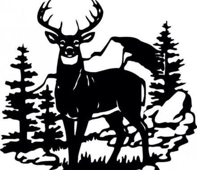640x550 Deer Scene Wildlife Decal 10 X 14 Large Black Or White Vinyl Car