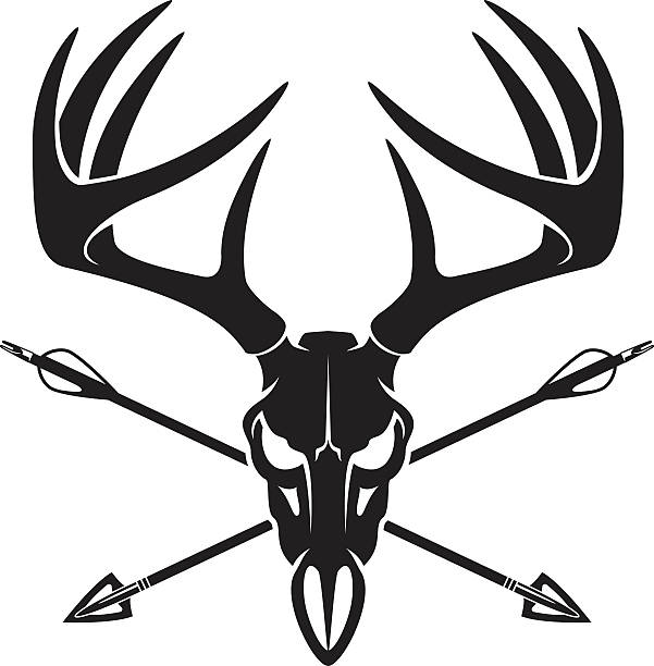 601x612 Hunting Clipart Whitetail Deer