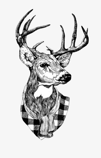 384x600 Black And White Deer, Black And White, Deer, Simple Png Image