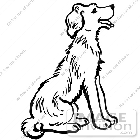 black and white dog drawing at getdrawings com free for personal rh getdrawings com free black and white dog and cat clipart free clipart images black and white dog