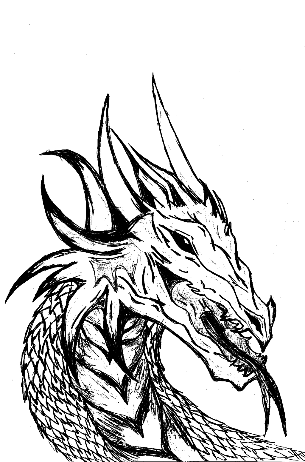 1024x1548 Cool Black And White Drawings Dragon Head (Black And White