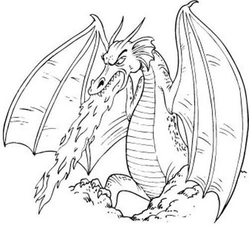 500x455 Dragons Free Images
