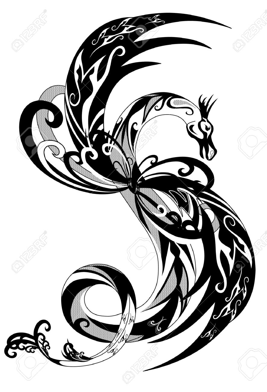 886x1300 Black And White Dragon Outline Illustration Royalty Free Cliparts