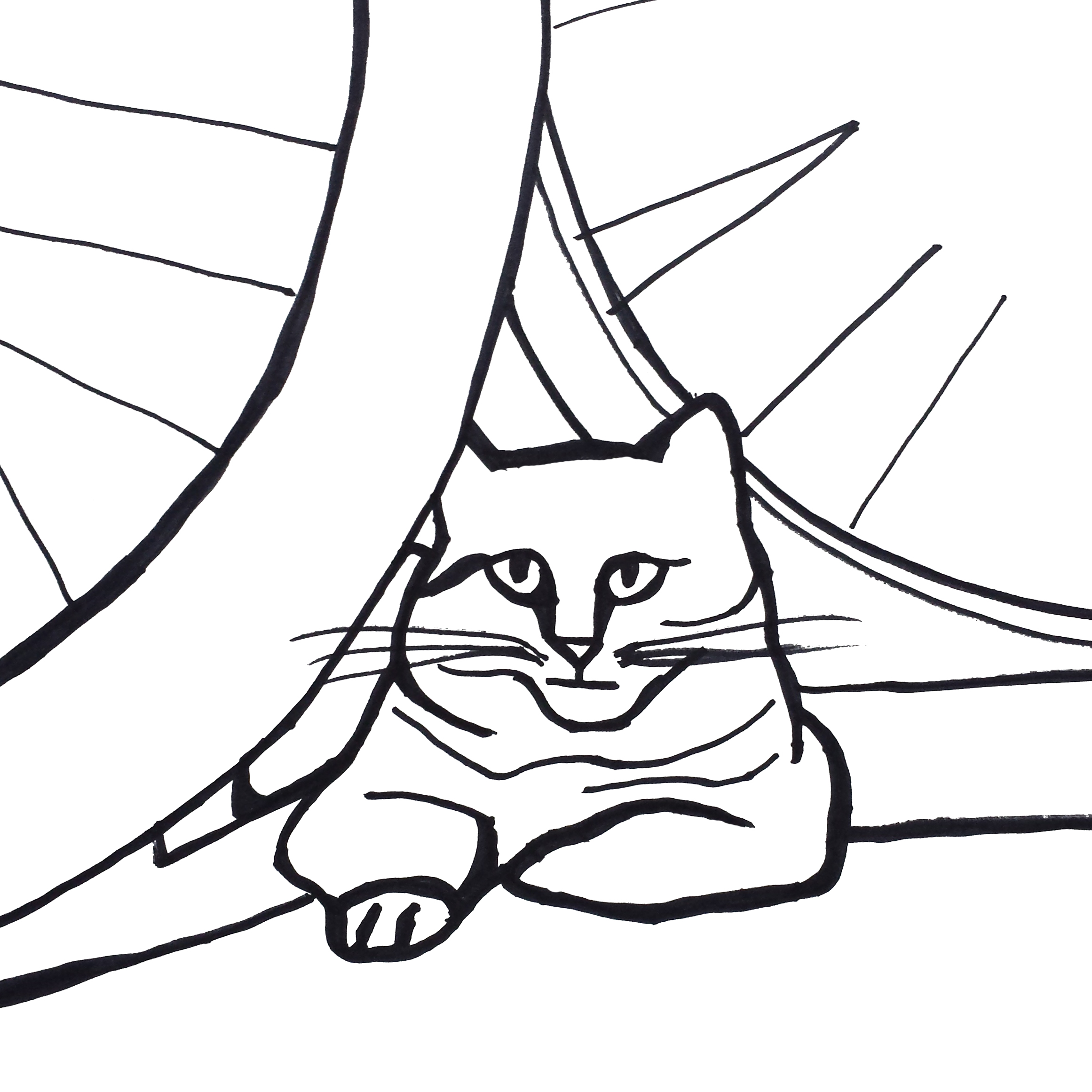 Black And White Drawing Of A Cat