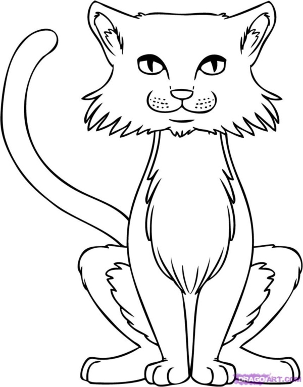 600x767 40 Simple Cat Drawing Examples Anyone Can Try