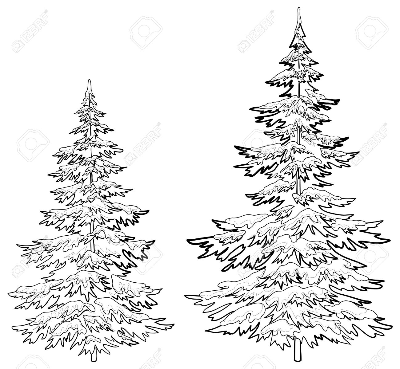 1300x1201 Pine Tree Line Drawing Vector, Christmas Trees Under Snow On