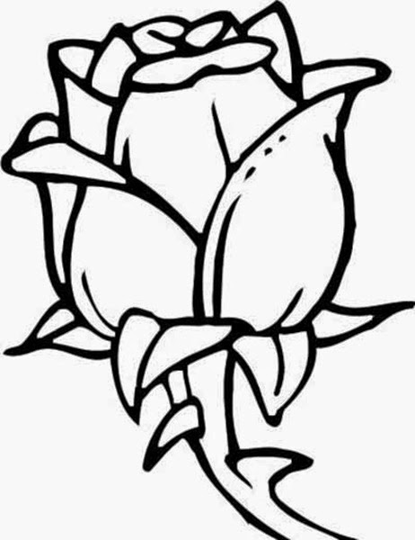 Black and white drawing of flowers at getdrawings free for 462x600 flowers drawings many flowers mightylinksfo