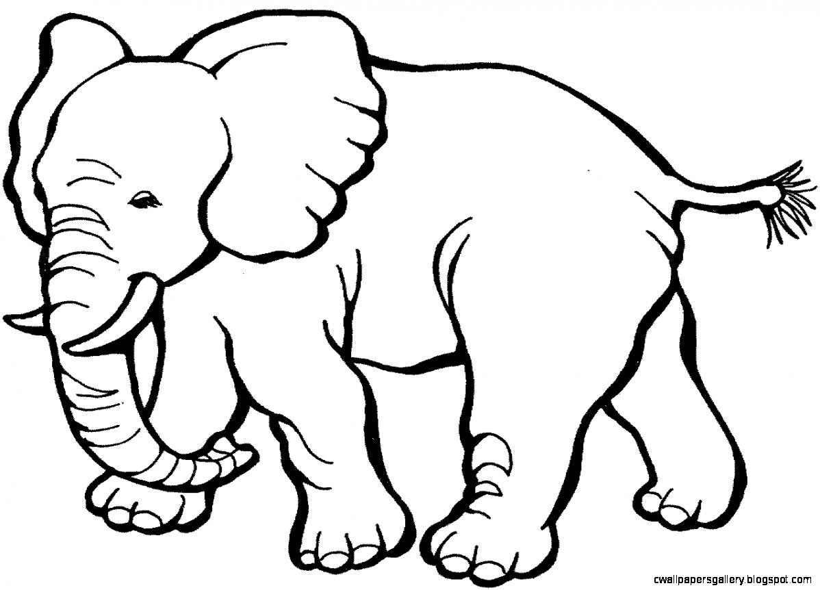 black and white elephant drawing at getdrawings com free for rh getdrawings com white elephant sale clip art elephant black and white clip art images