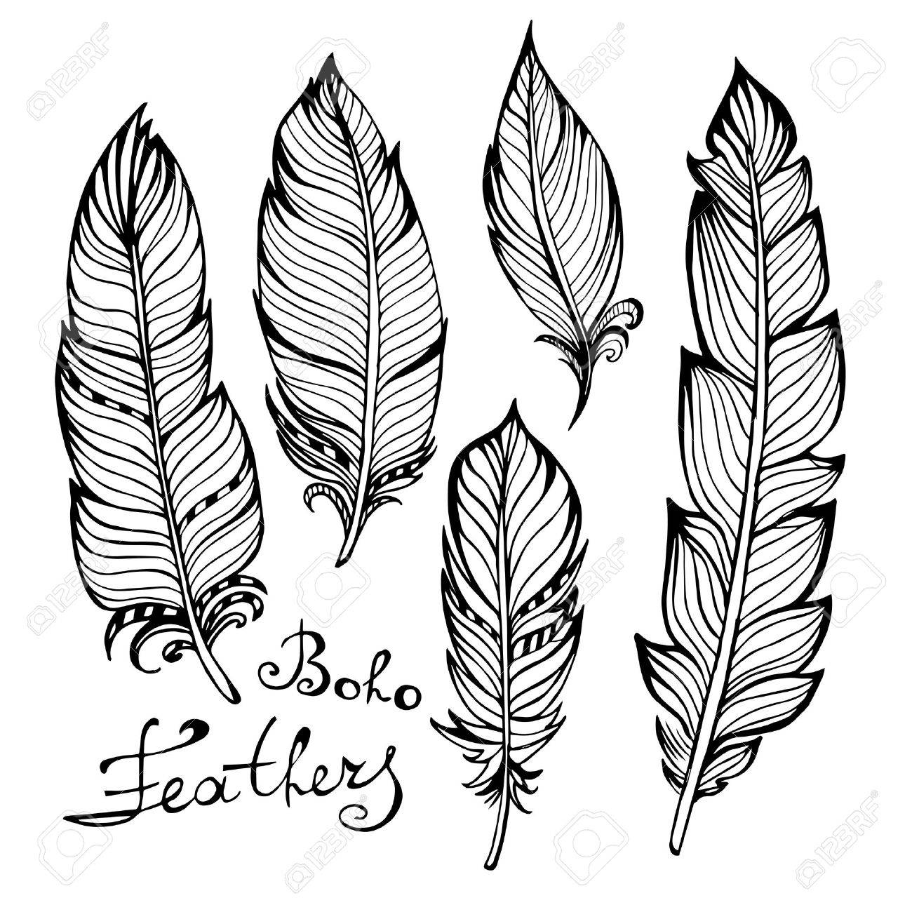 1300x1300 Hand Drawn Bird Black Feathers Closeup Isolated On White