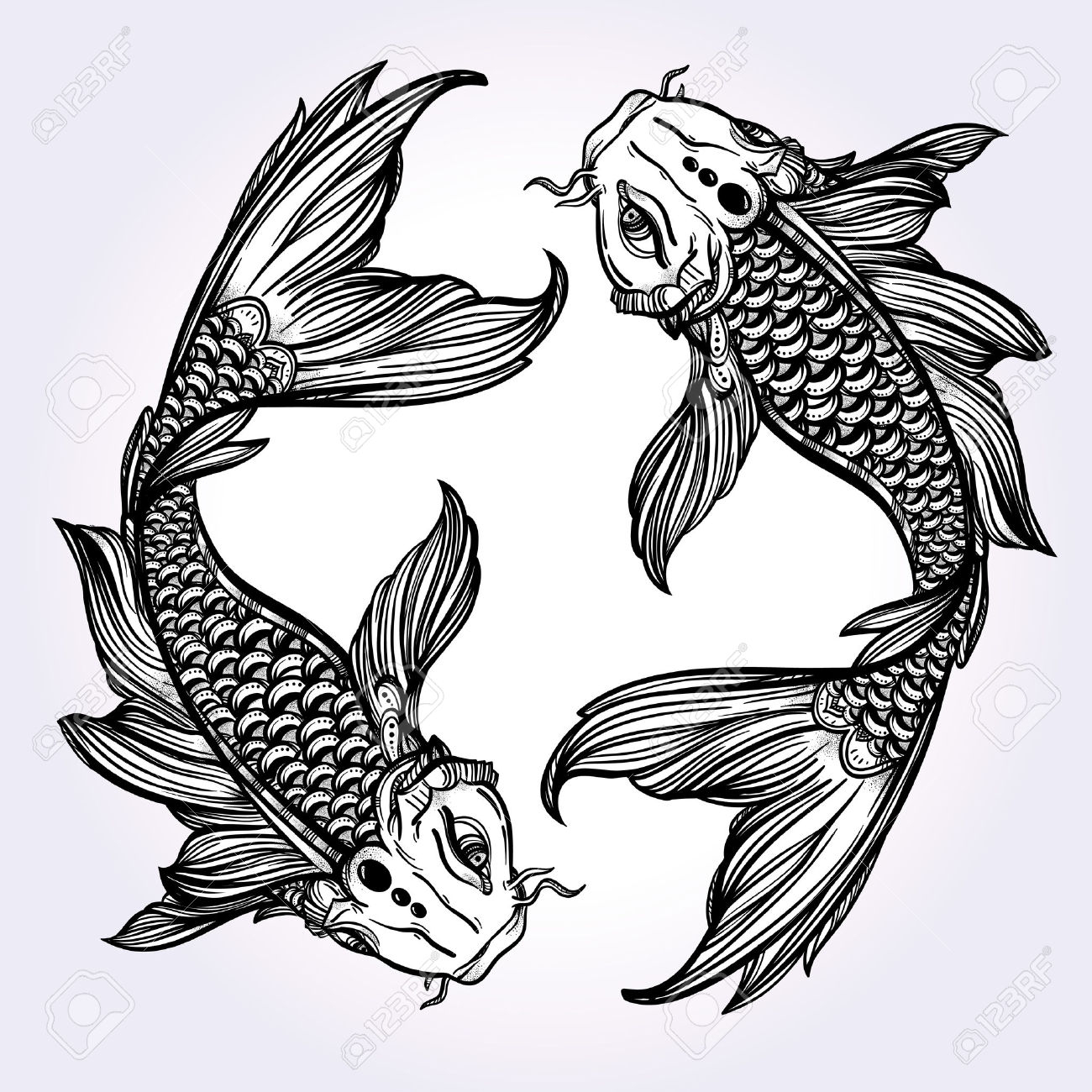 Black and white fish drawing at free for for Coy fish drawing