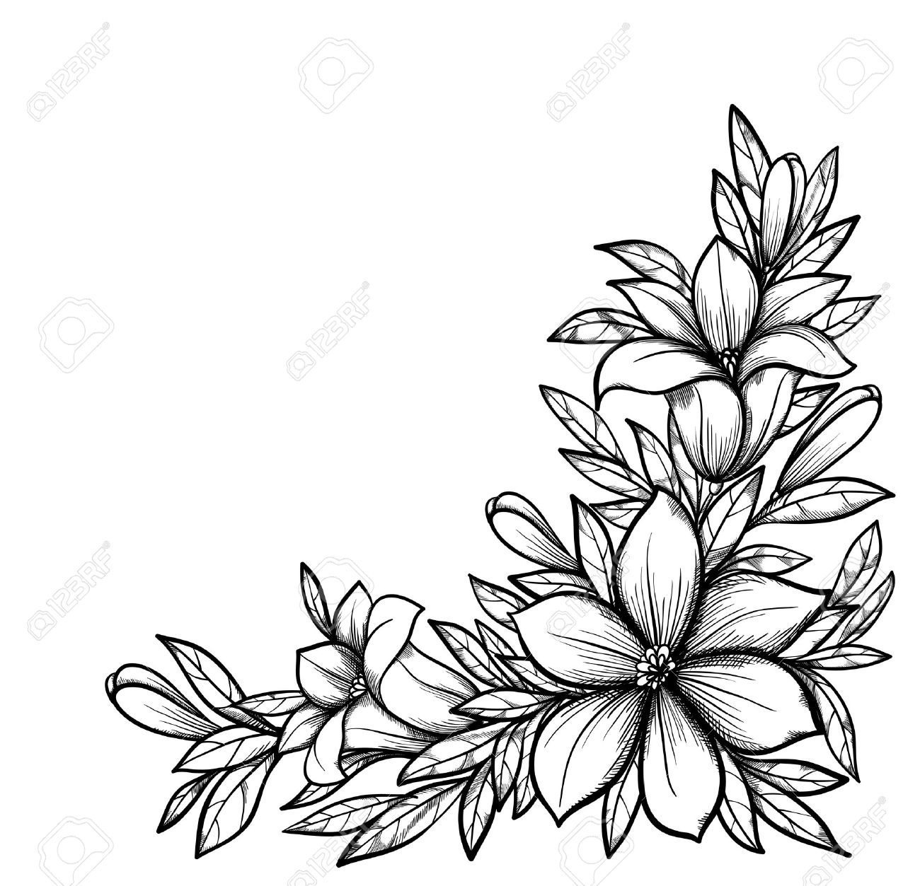 Black and white flower drawing at getdrawings free for 1300x1253 beautiful black and white branch with flowers drawn in graphical mightylinksfo