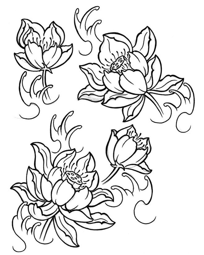 Black And White Flowers Drawing