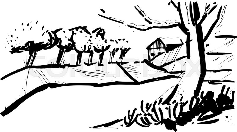 800x445 Landscape With The Trees In The Style Of Sketch Art, Line Drawing