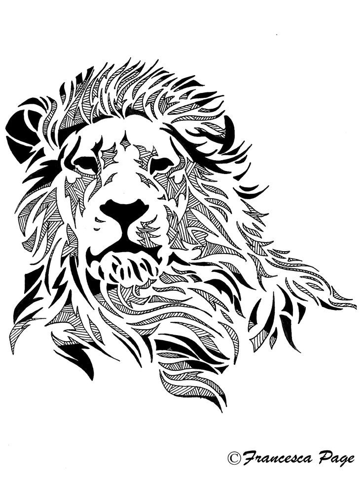 736x975 Image Result For Drawing Made Of Lines Tats Lion