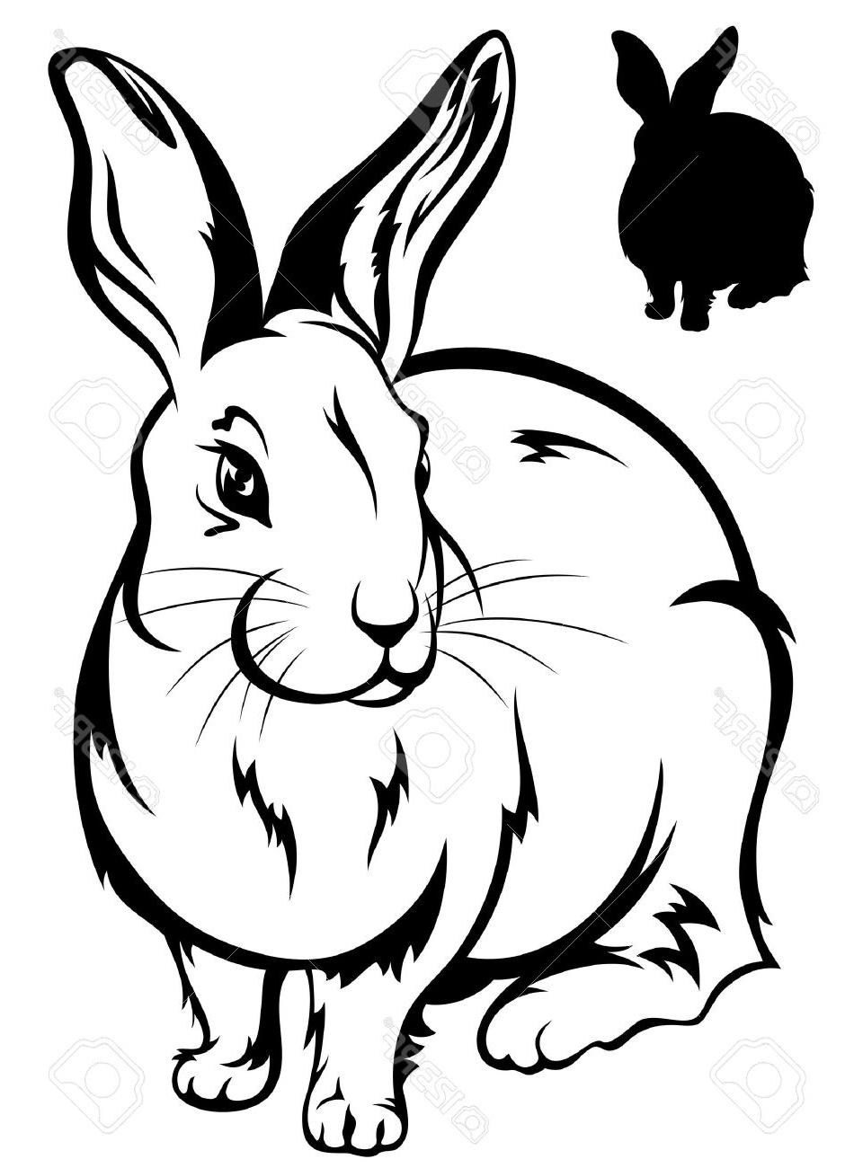 950x1300 Top Cute Rabbit Illustration Black And White Outline Silhouette