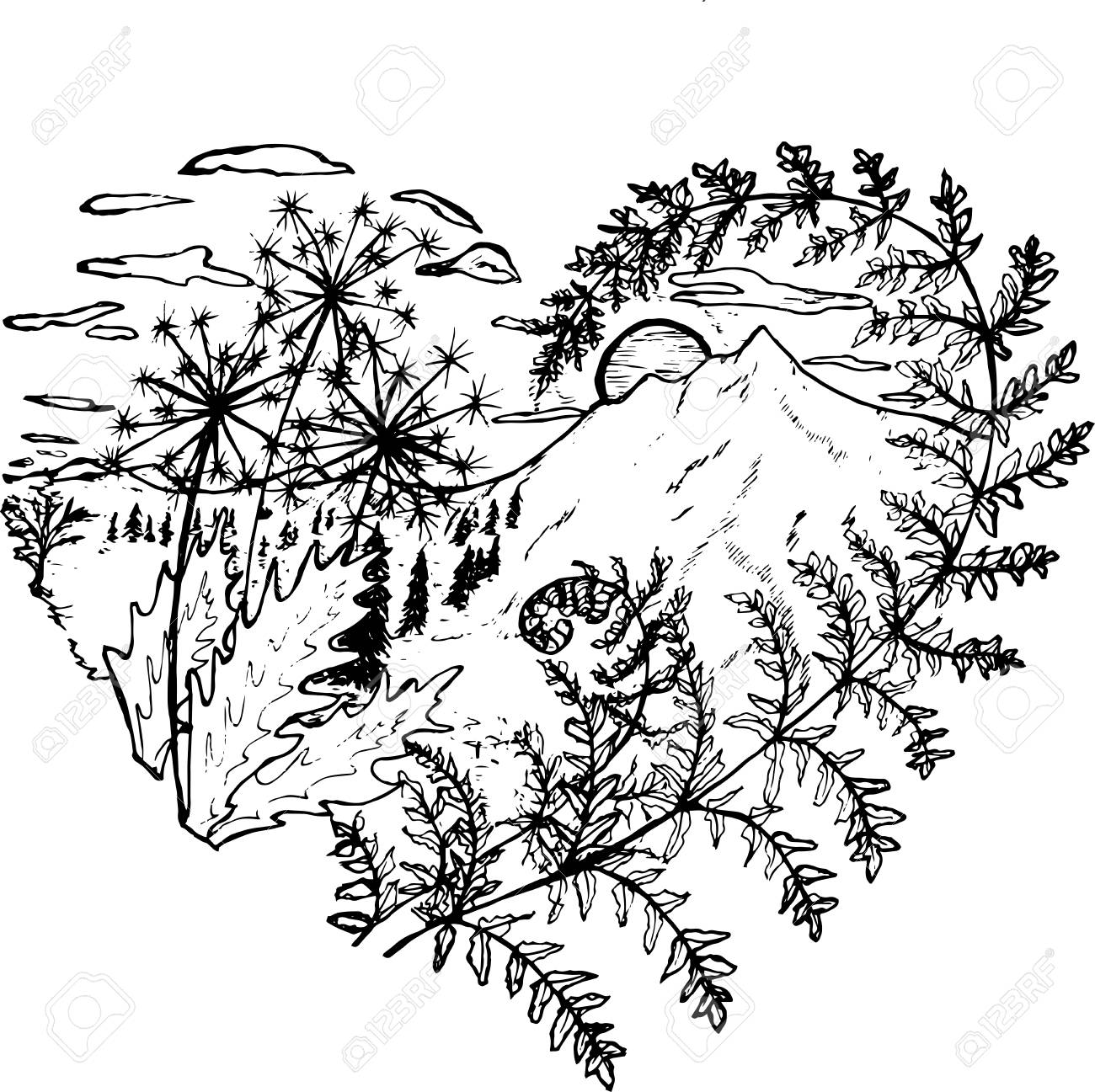 1300x1297 Black And White Drawing Of The Heart, In Which Dandelions, Fern