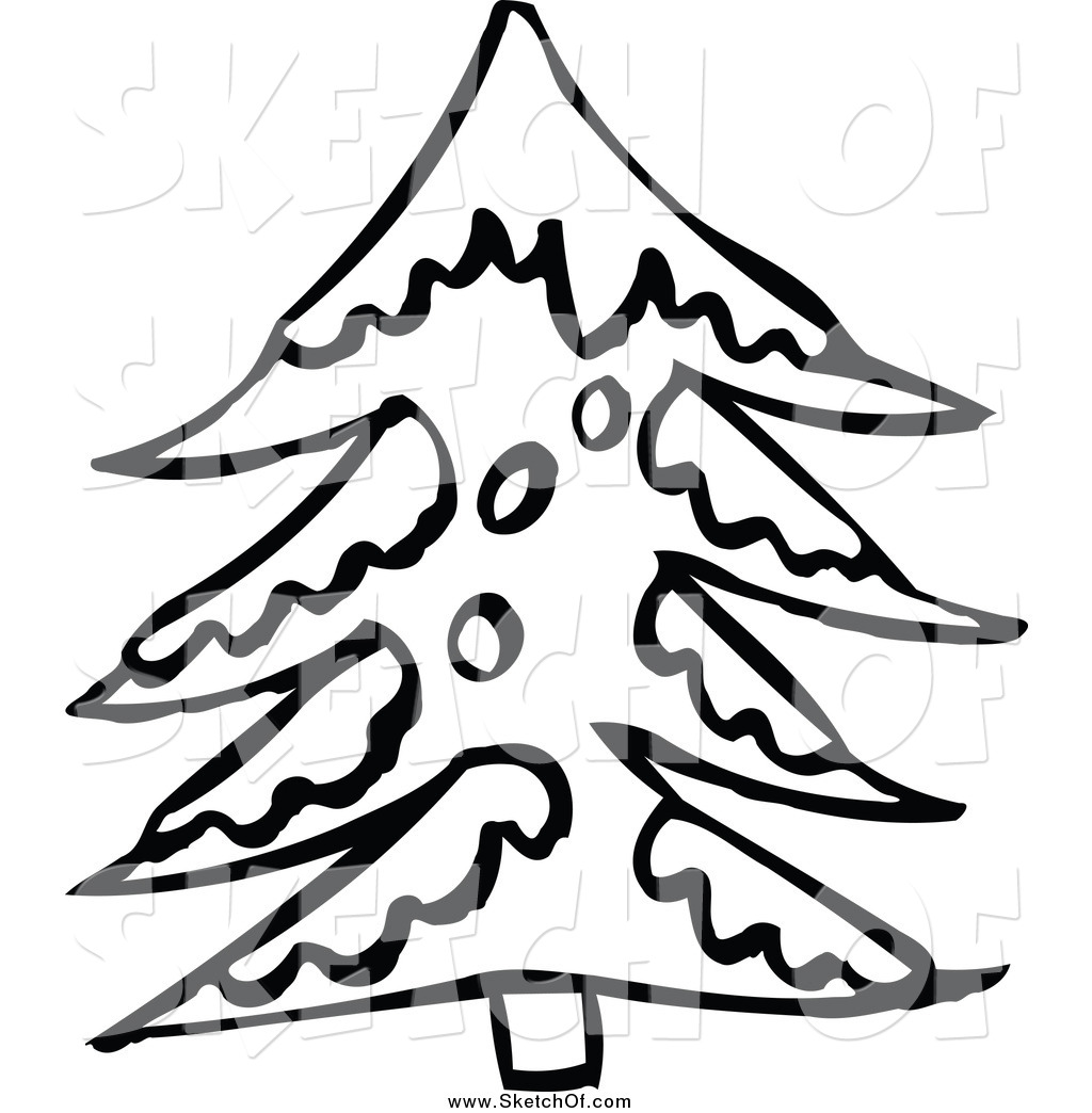1024x1044 Drawing Of A Black And White Sketched Snow Flocked Evergreen Tree
