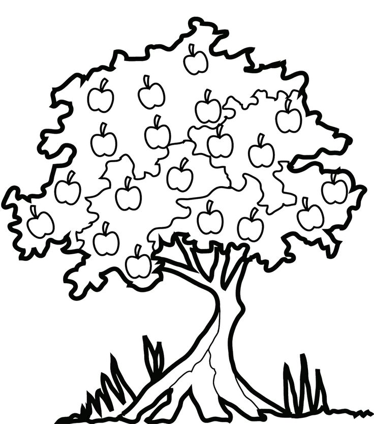Black And White Trees Drawing At Getdrawings Com