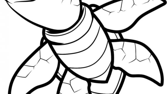 570x320 Sea Turtle Drawing Black And White Drawing Of A Sea Turtle